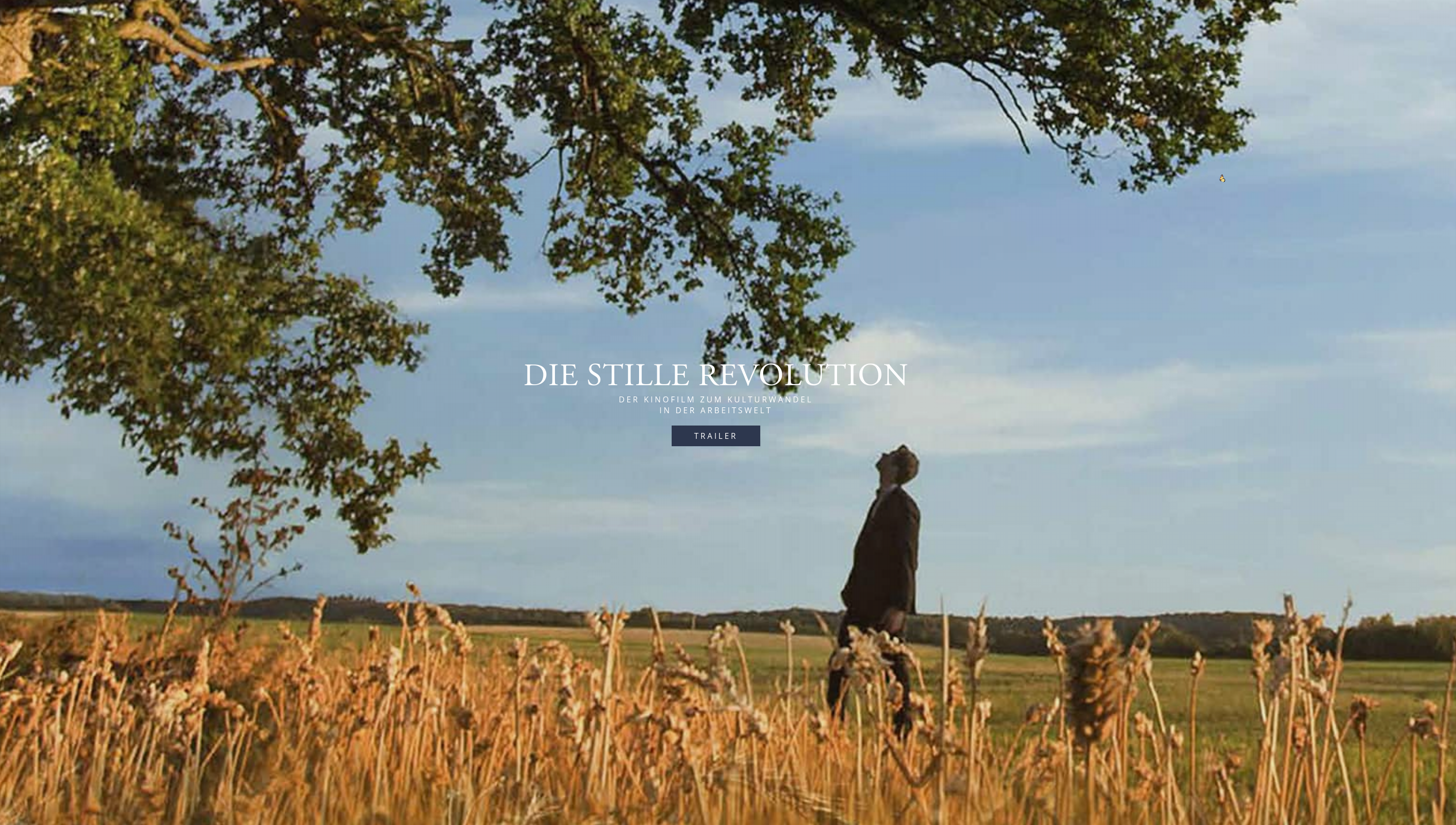 Mann in Feld schaut auf Baum