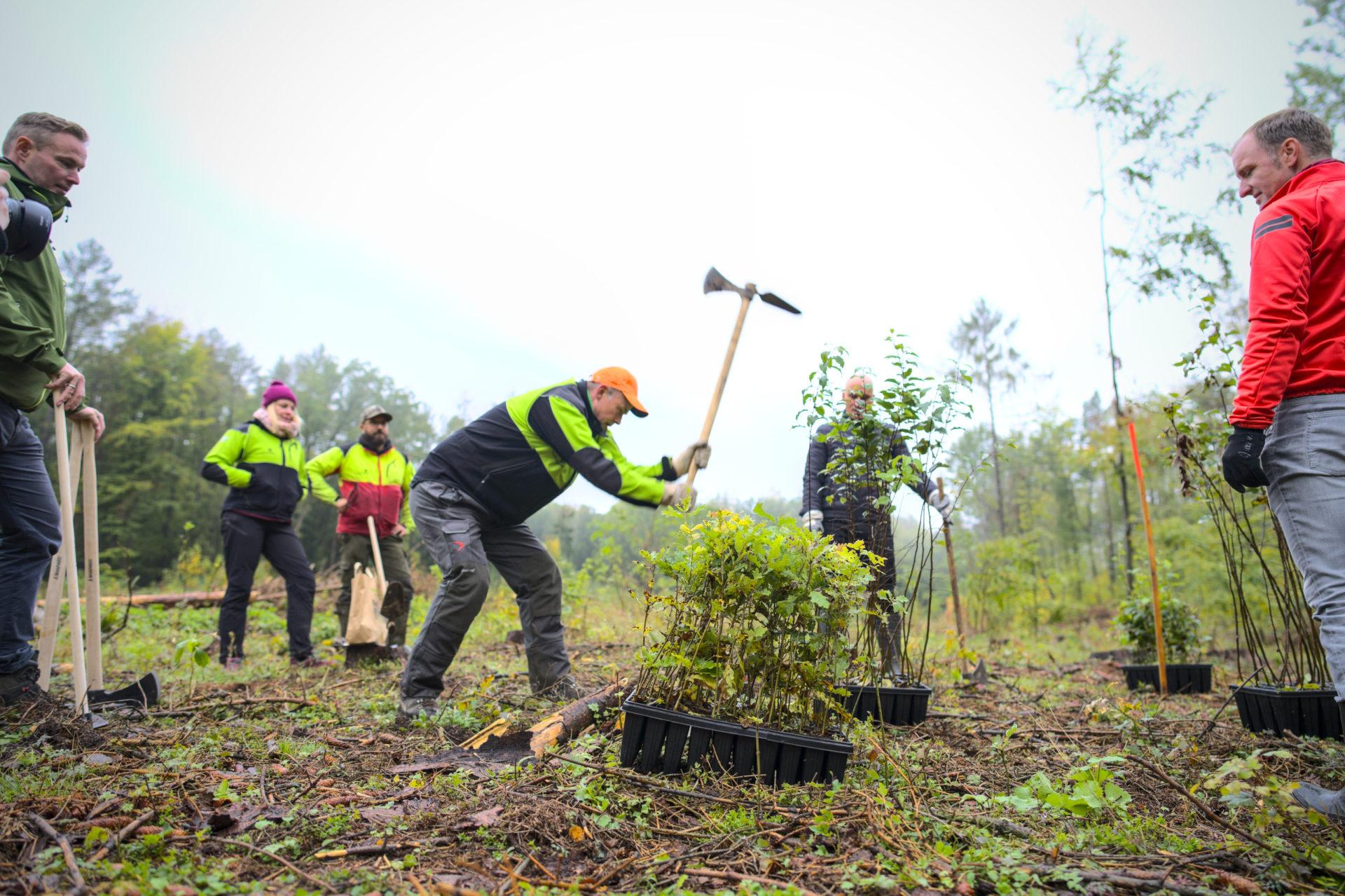 Stadtradeln Erfurt 2020 - Baumpflanzaktion von 275 Bäumen